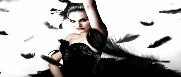 13-Black-Swan